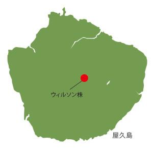 屋久島シルエット_ウィルソン株地図
